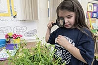A young girl looks at a plant through a magnifying glass